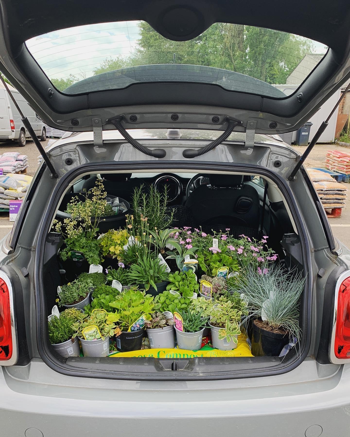 A car full of plants